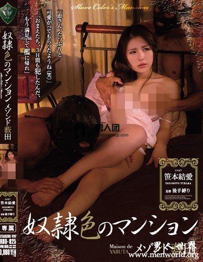 SHKD-726封面与中文介__笹本結愛(笹本结爱)出道至今的作品番号封面合集