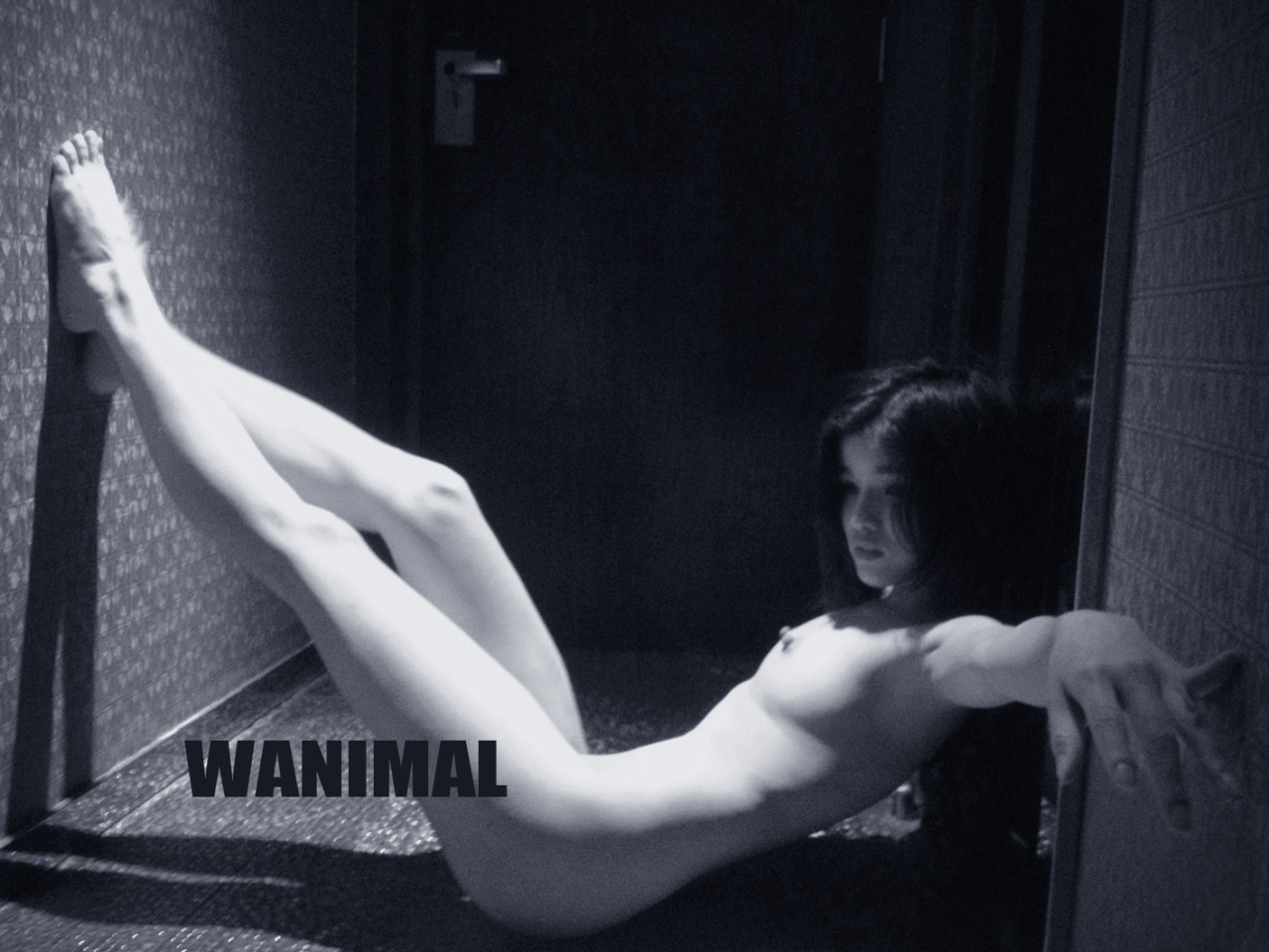 [WANIMAL王动] 2014年 作品 [50P]第五期