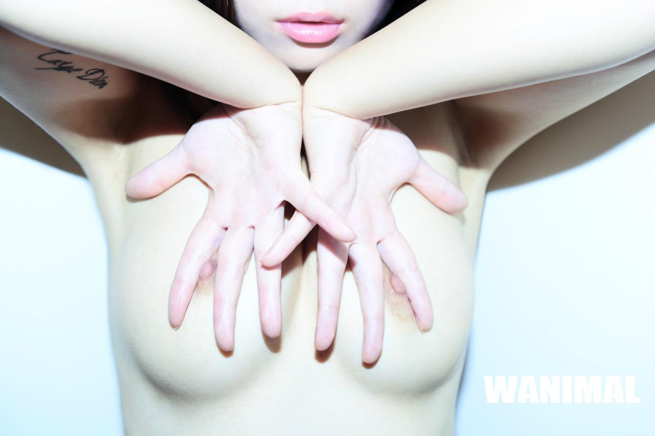 [WANIMAL王动] 2014年 作品 [50P]第六期